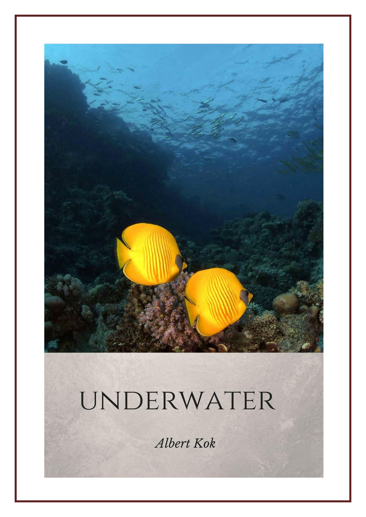 02fe22542d56d Notes and observations from the world under the waterline