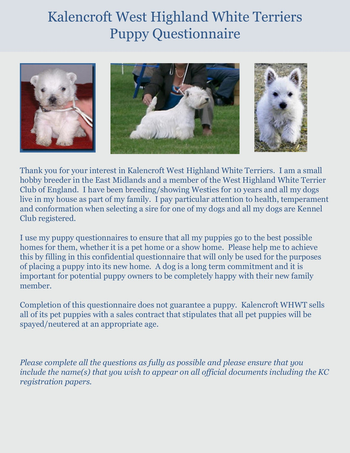Kalencroft West Highland White Terriers Puppy Questionnaire