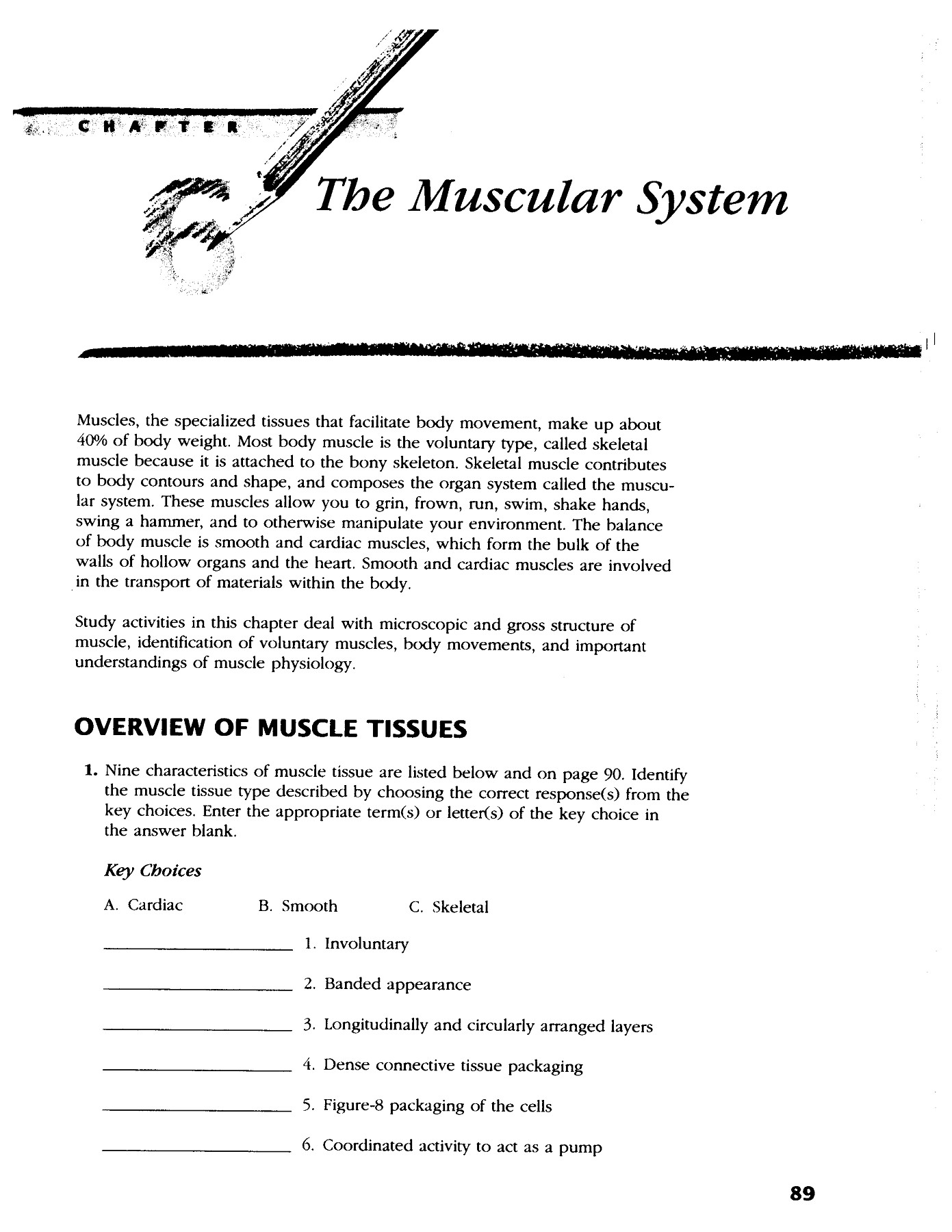 CHAPTER The Muscular System Blue Valley Schools Pages 1