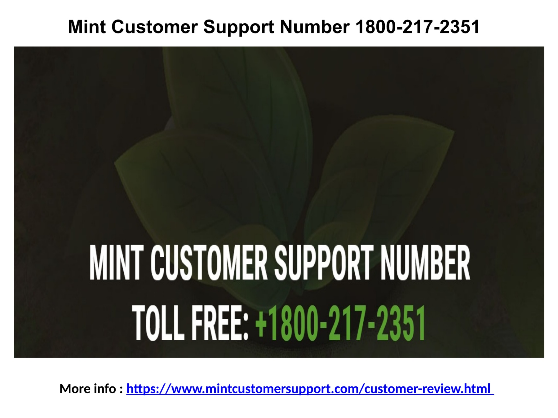 Mint Customer Service 1800-217-2351 Pages 1 - 4 - Text Version | AnyFlip