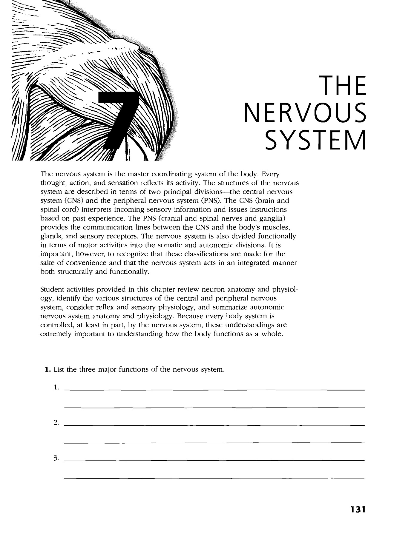 THE NERVOUS SYSTEM Lake County Schools Overview Pages 1