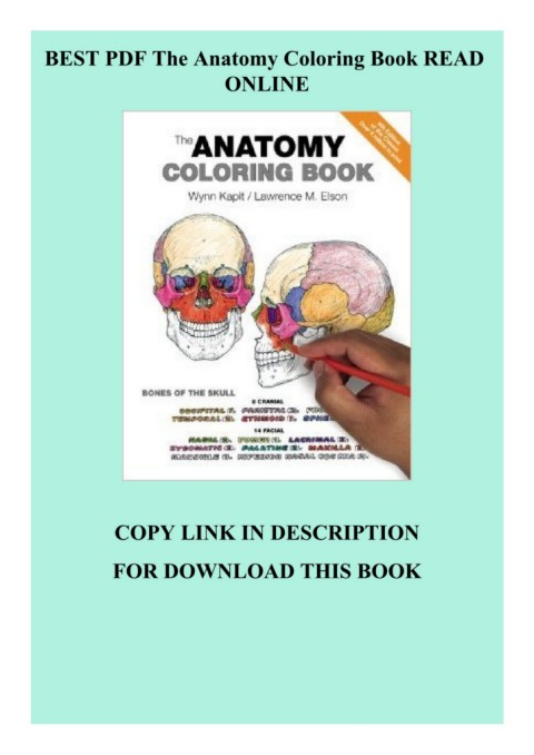 BEST PDF The Anatomy Coloring Book READ ONLINE Pages 1 - 3 - Text Version  AnyFlip